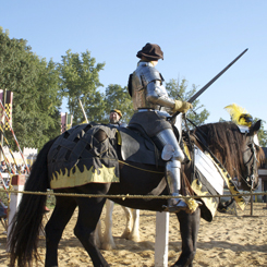 Get Thee to a Renaissance Faire
