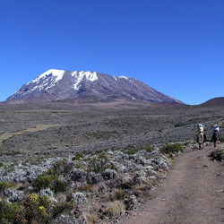 From the Snows of Siberia to the Snows of Kilimanjaro