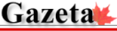 NEWS-Gazeta_logo_2014_250-e1454255933852