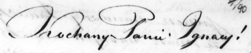 "In his florid penmanship, Korwin writes, ""Szanowny Panie Ignacy!"" (Respected Mr. Ignacy!)"