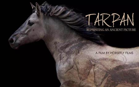 Tarpan_Poster