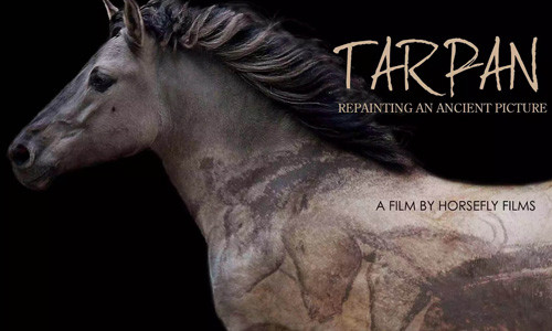 Tarpan: Repainting an Ancient Picture