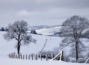 winter-landscape-623606_960_720