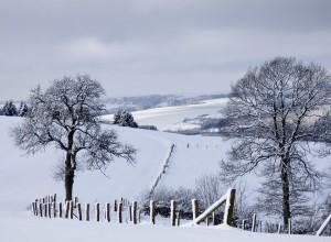 winter-landscape-623606_960_720